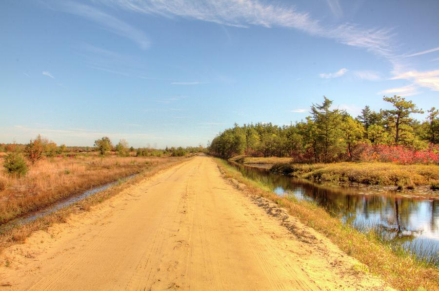 Recent Photograph - Pine Barrens Of New Jersey Cranberry Harvest Bogs  by Geraldine Scull