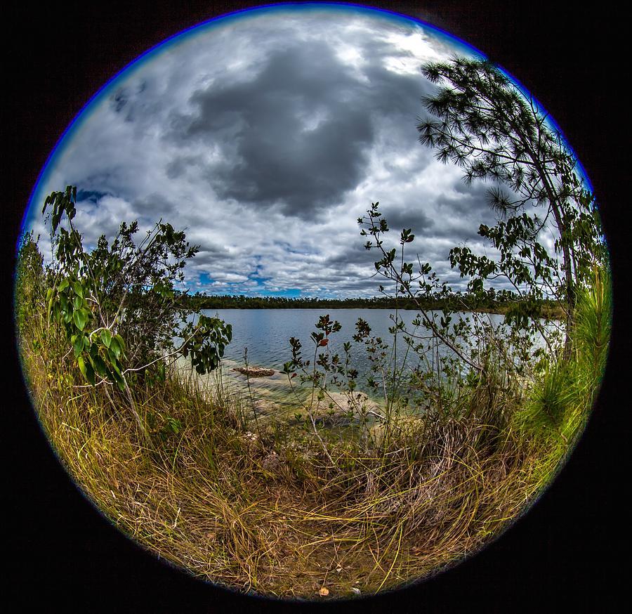 Pine Glades Lake 18 by Michael Fryd