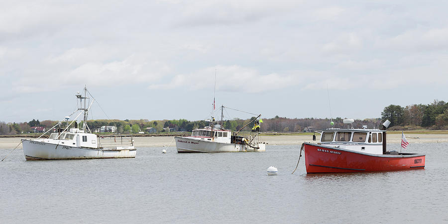 Pine Point Boats Photograph