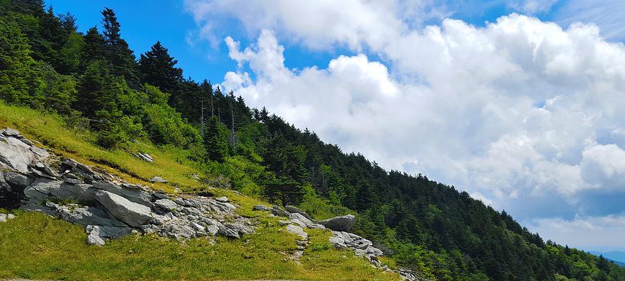 Sky Photograph - Pine Ridge by Ric Schafer