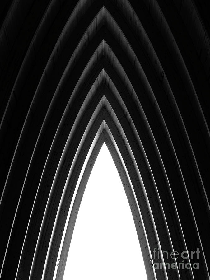 Architecture Photograph - Pine by Tapio Koivula