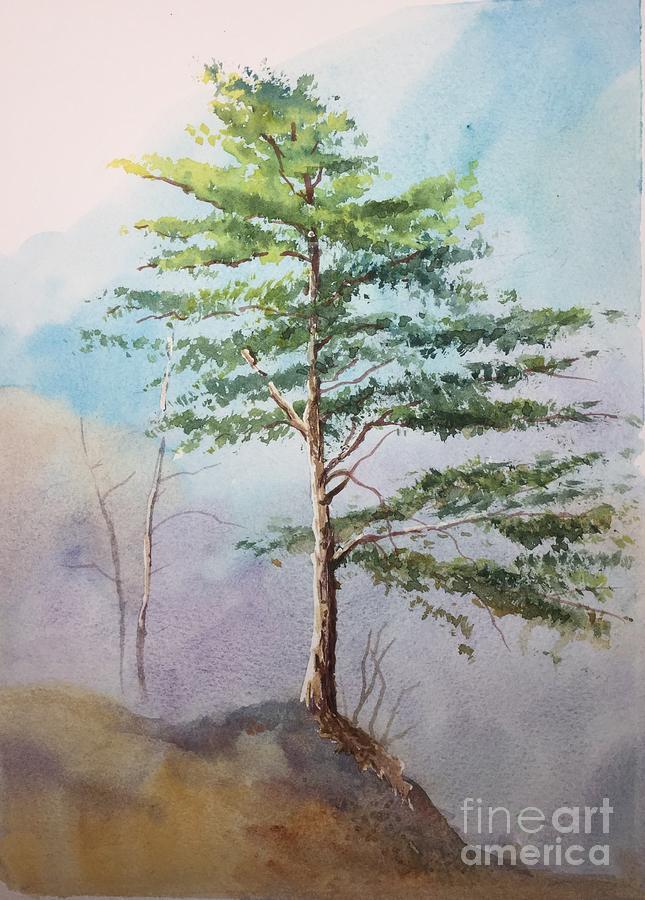 Pine tree Painting by Yohana Knobloch