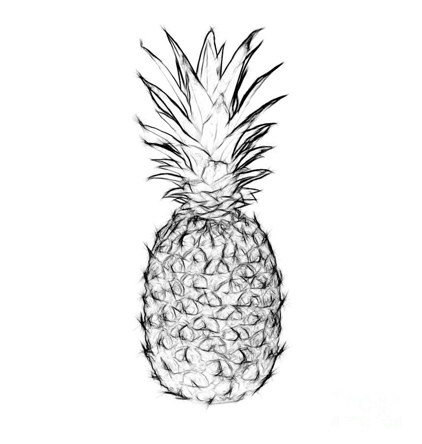 Pineapple Black And White Digital Art by Jennifer Capo