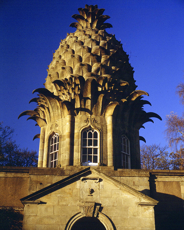 Architecture Photograph - Pineapple In Scotland by Donald Buchanan