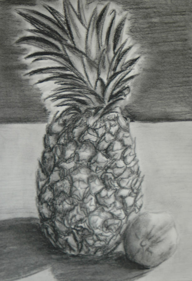 pineapple sketch is a vintage drawing vector image pineapple art