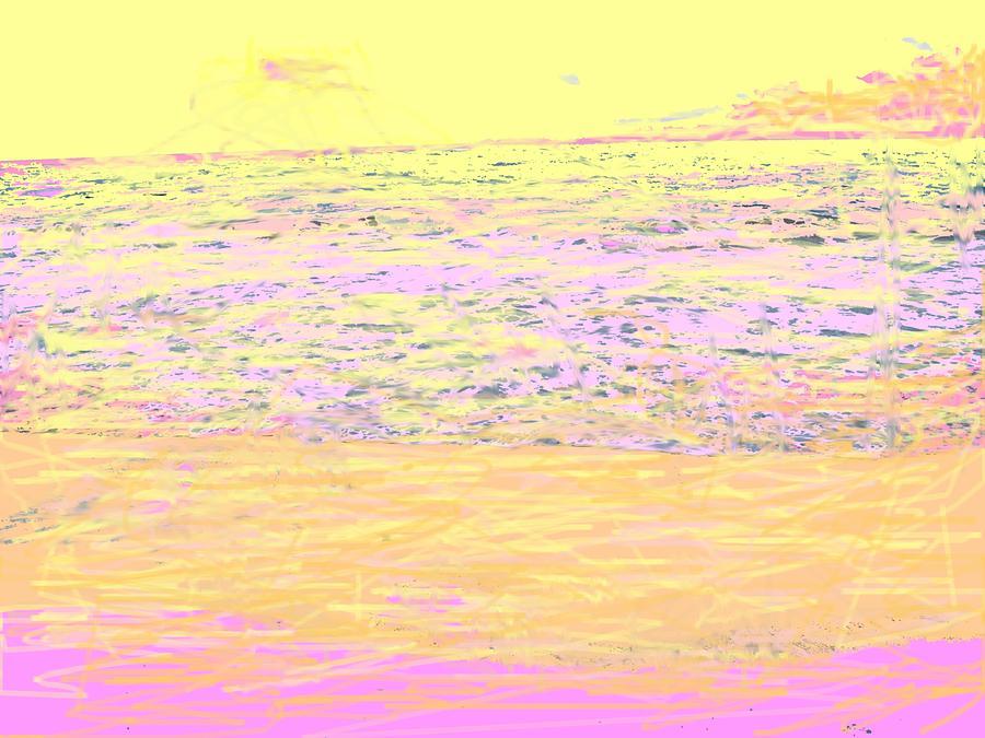 Seascape Photograph - Pineapple Sunset by Ian  MacDonald