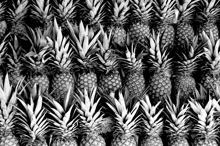 Pineapples in B/W by Gia Marie Houck