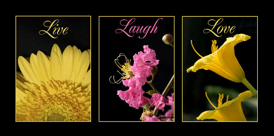 Yellow Photograph - Pink and Yellow Flowers by Jessica Wakefield