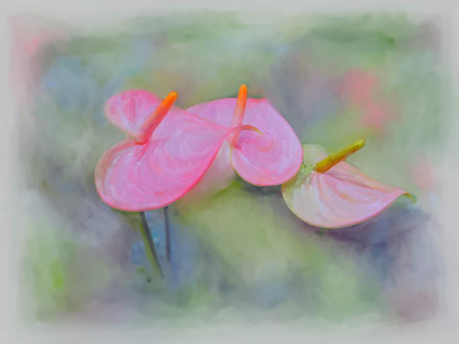 Anthurium Digital Art - Pink Anthurium by Usha Shantharam