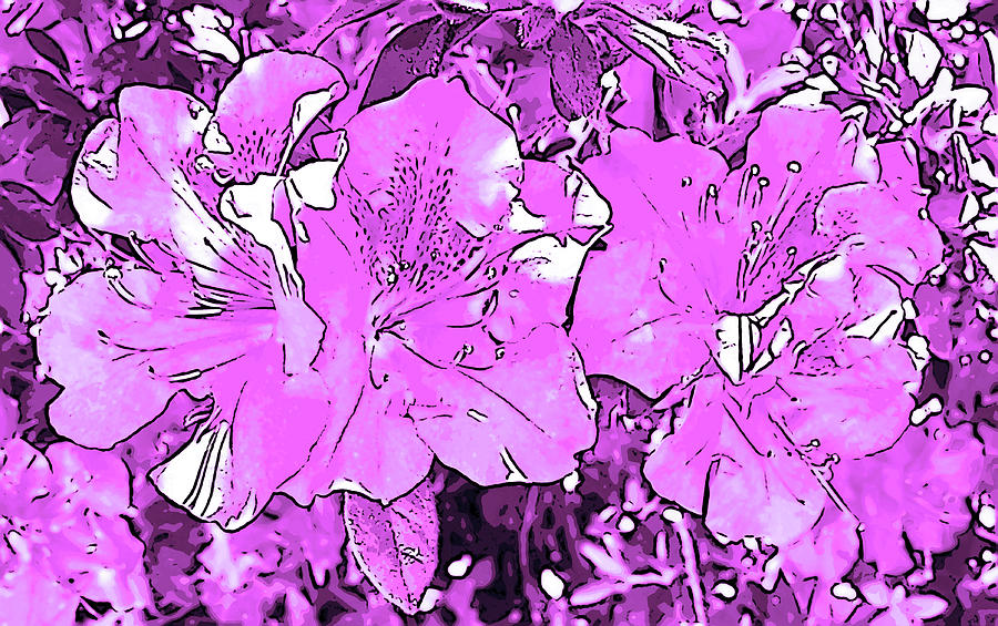 Photograph Digital Art - Pink Bevy Of Beauties On A Sunny Day In Violet by Marian Bell