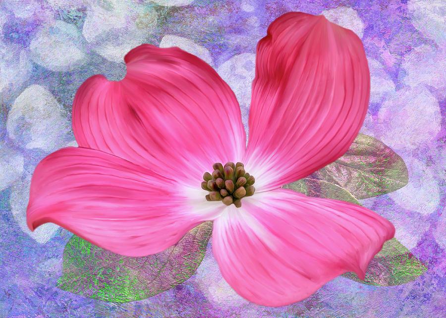 Pink Dogwood Blossom #4 by Bill Johnson