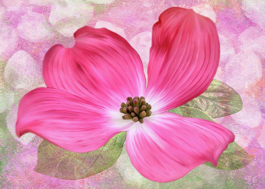 Pink Dogwood Blossom #5 by Bill Johnson