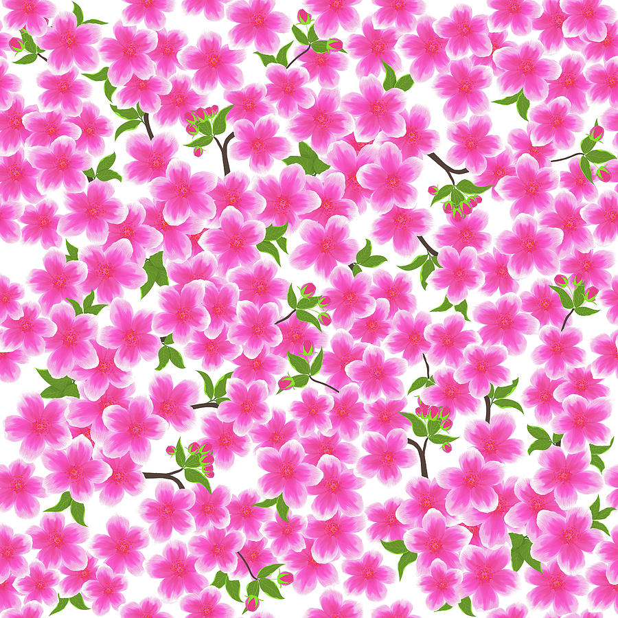 Pink Dogwood Flowers On White Digital Art By Sharalee Art