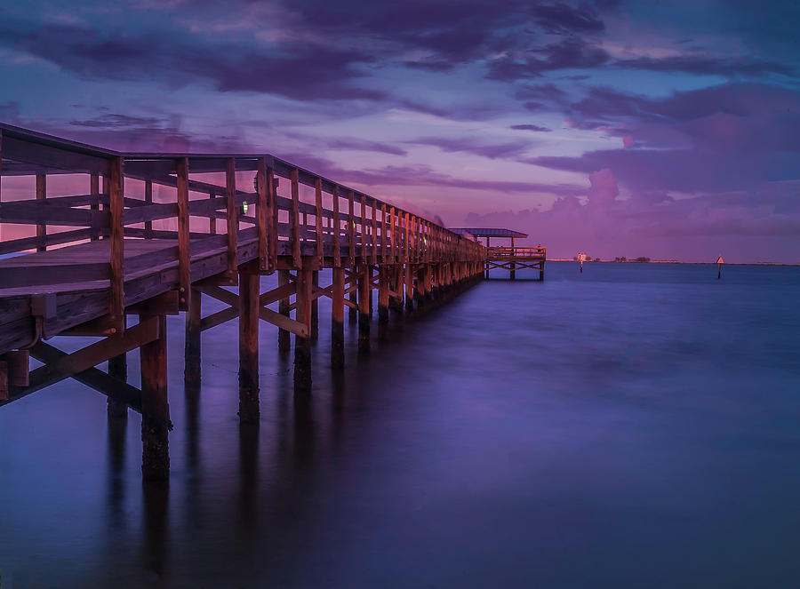 Safety Harbor Florida Photograph - Pink Dreams by Todd Rogers