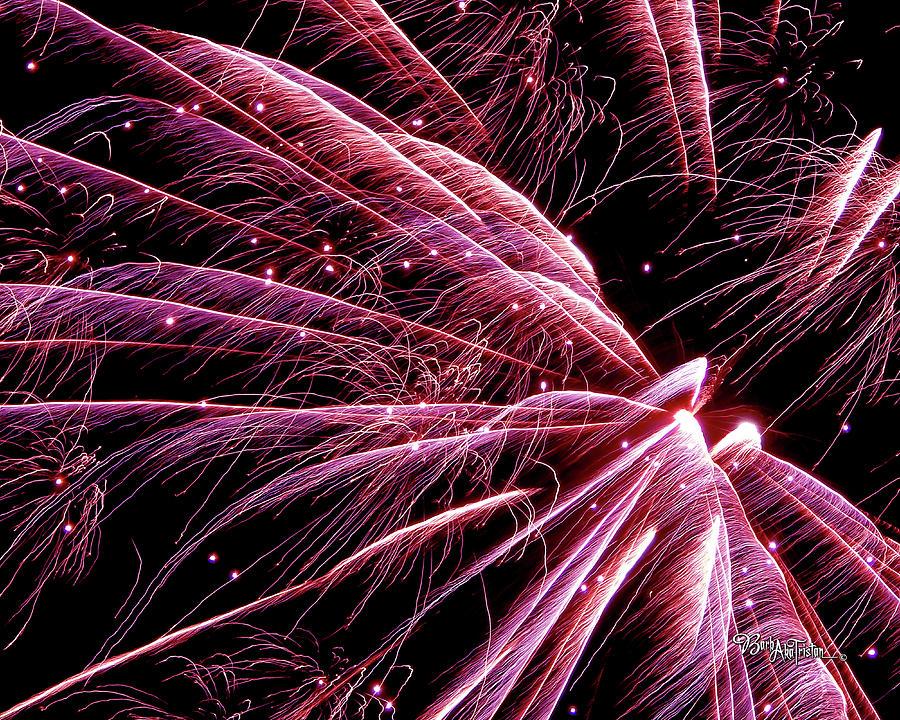 Fireworks Photograph - Pink Flamingo Fireworks #0710 by Barbara Tristan