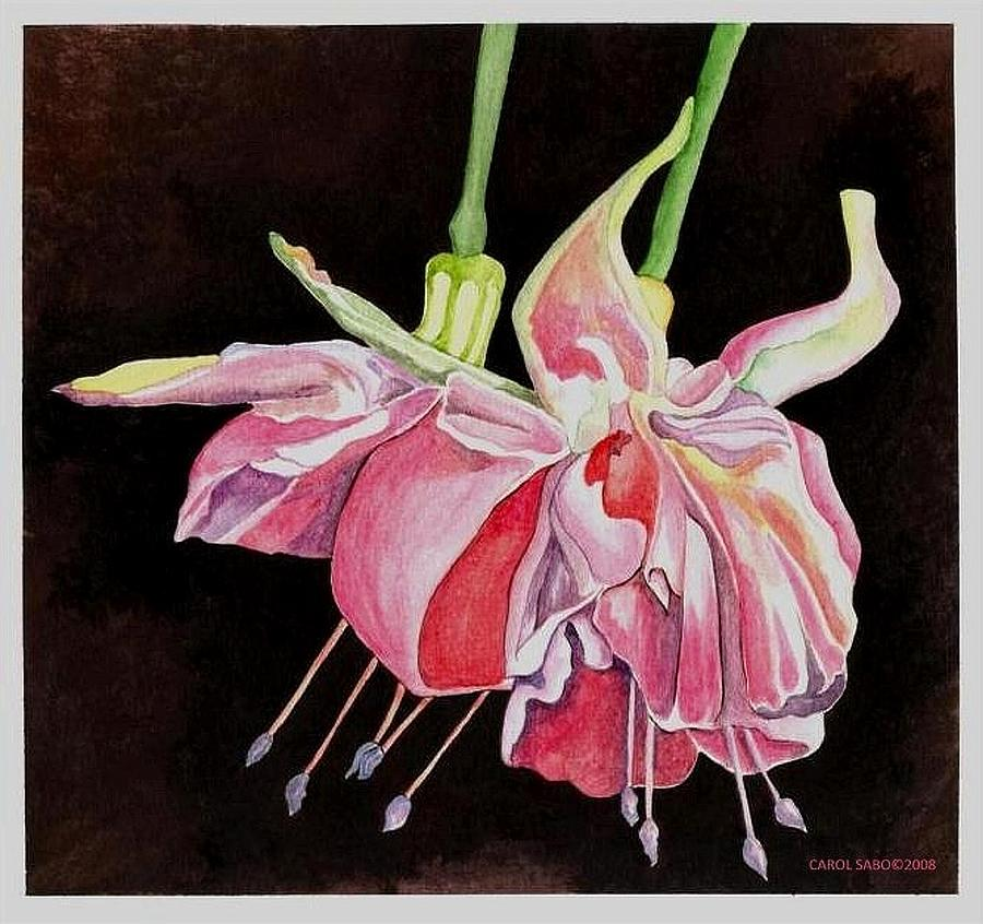 Flowers Painting - Pink Fuscia by Carol Sabo
