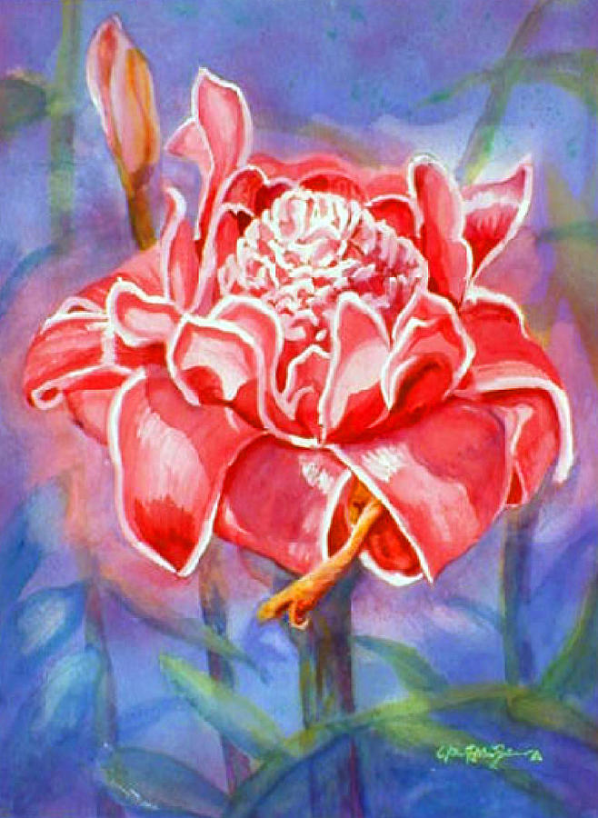 Watercolor Painting - Pink Ginger by Estela Robles