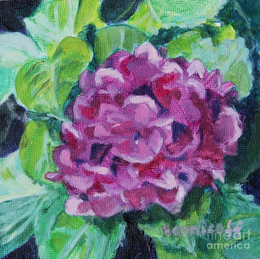 Pink Hydrangea by Jan Bennicoff
