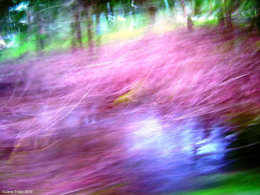 Impressionist Landscape Photograph - Pink by Jane Tripp