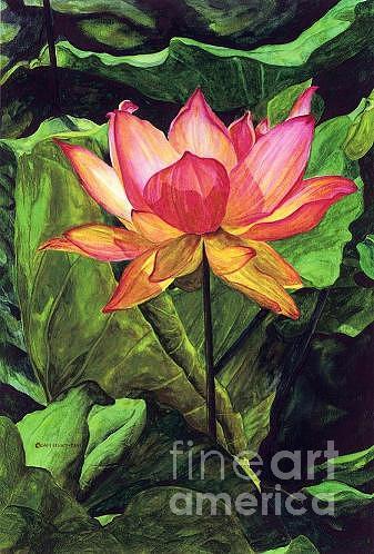 Pink Painting - Pink Lily by Chris Elliott-Davis