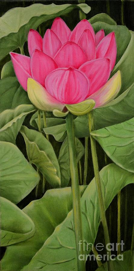 Pink Lotus And Leaves Painting
