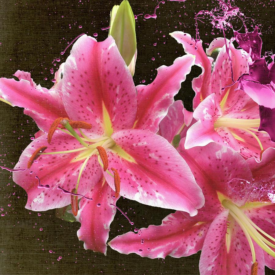Pink Flowers Digital Art - Pink by M Montoya Alicea