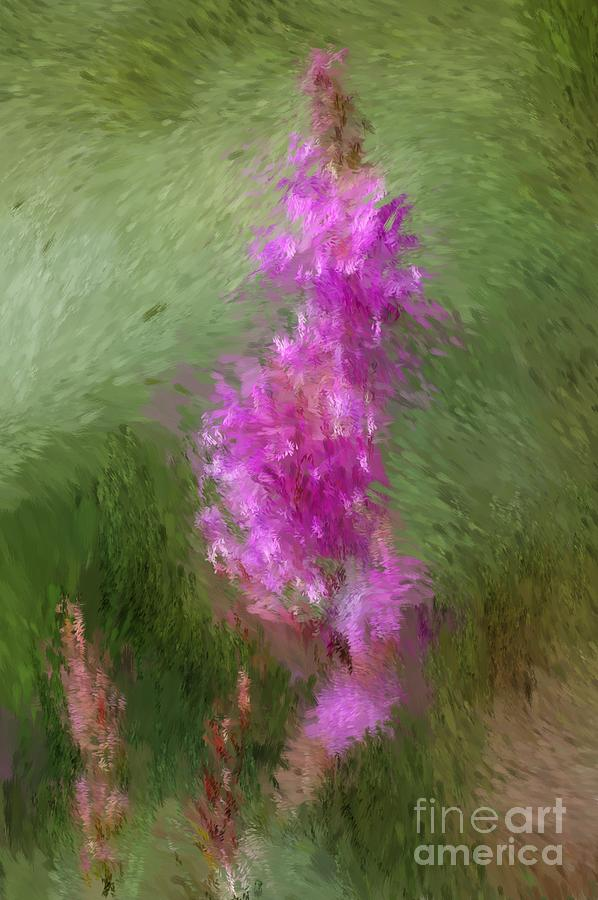 Abstract Digital Art - Pink Nature Abstract by David Lane