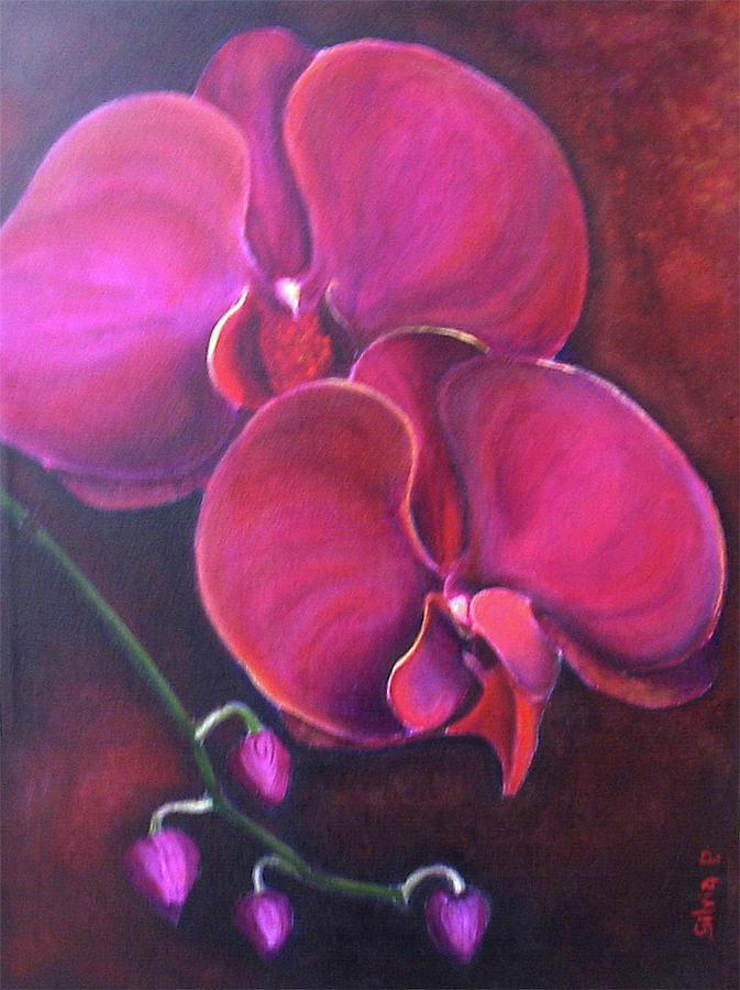 Orchid Painting - Pink Orchid by Silvia Philippsohn