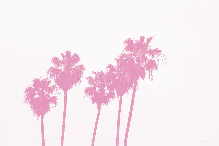 Palm Trees Photograph - Pink Palm Trees- Art by Linda Woods by Linda Woods
