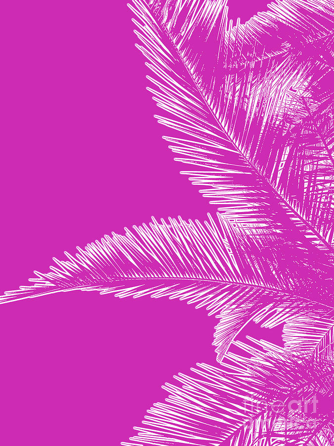 Pink Palm Trees In Minimalism Photograph