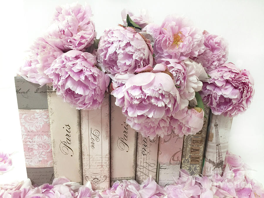 Pink Peonies Paris Books Romantic Shabby Chic Wall Art Home Decor ...