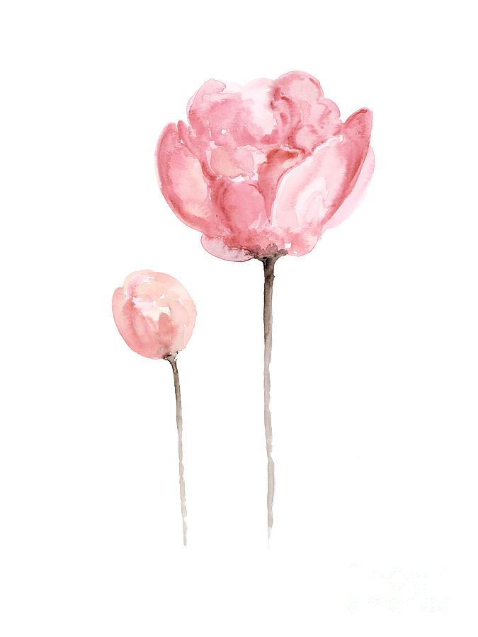 Pink peonies watercolor painting painting by joanna szmerdt peony painting pink peonies watercolor painting by joanna szmerdt mightylinksfo