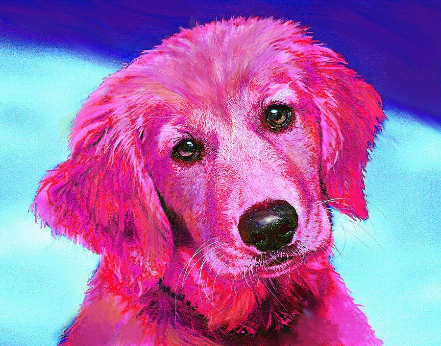 Retriever Digital Art - Pink Retriever by Jane Schnetlage