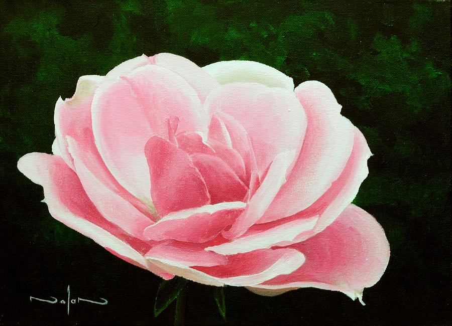 Acrylic Painting - Pink Rose by Nolan Clark