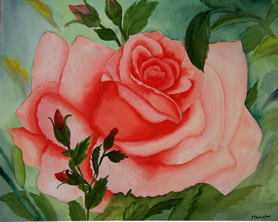Pink Rose Painting - Pink Rose by Robert Thomaston