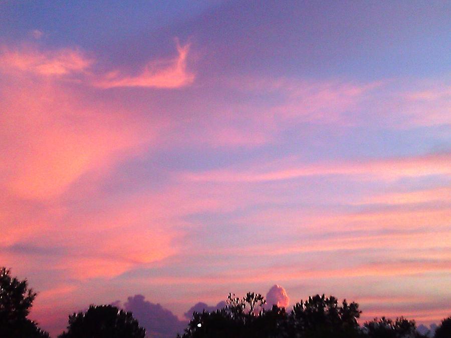 Pink Sky by Katherine Eatmon