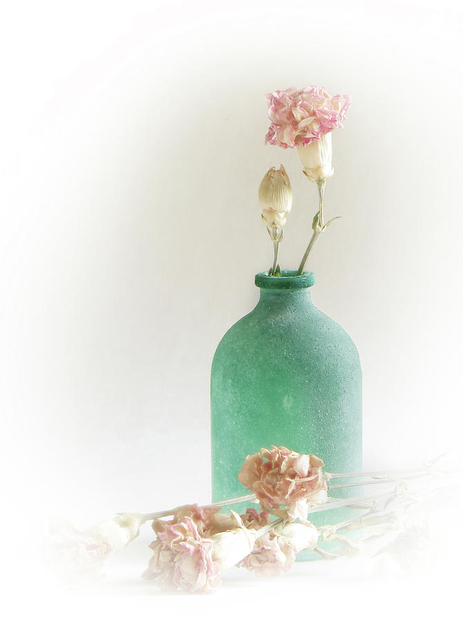 Pink Photograph - Pink Turquoise by Aubri Johneen