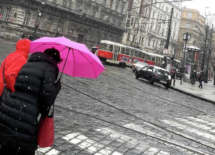 Pink umbrella  by Radka Zimova King