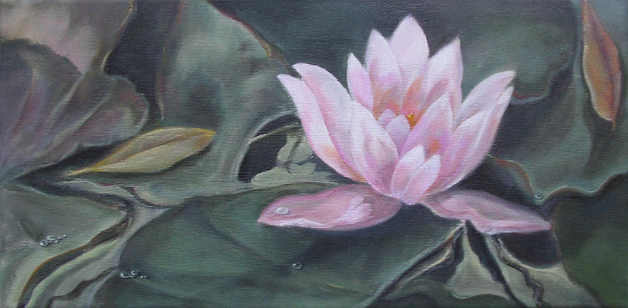 Pond Painting - Pink Water Lily by Eve Corin
