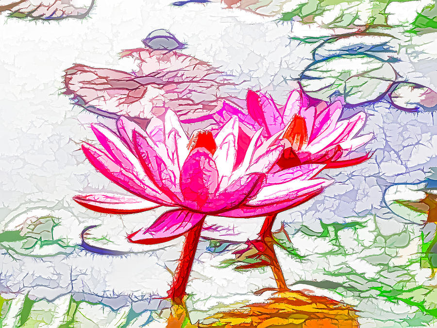 Pond Painting - Pink Water Lily Flowers Blooming On Pond by Lanjee Chee
