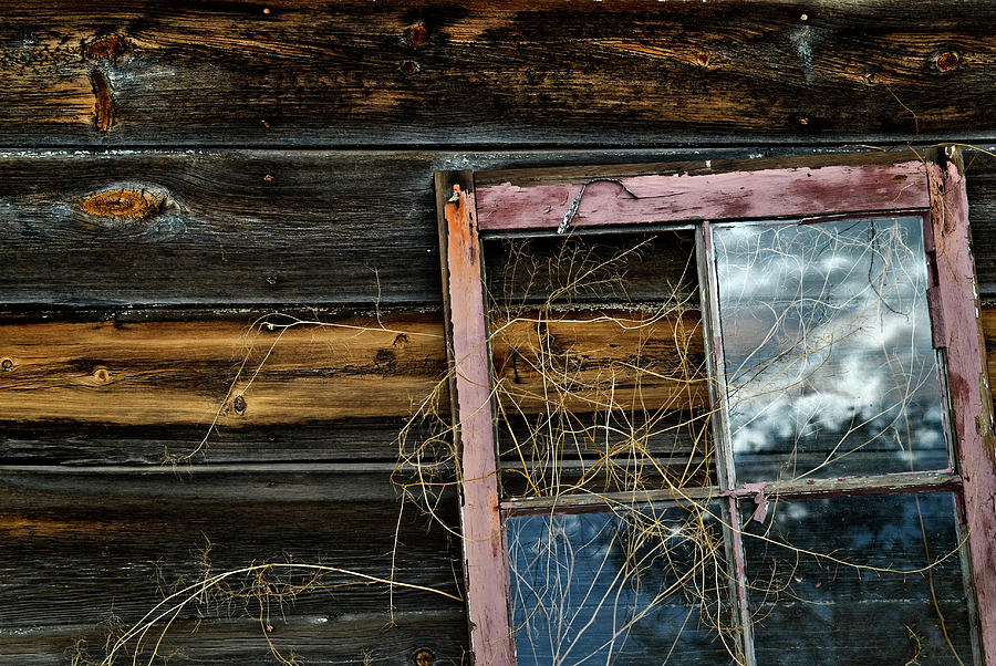 Weathered Photograph - Pink Window by Murray Bloom