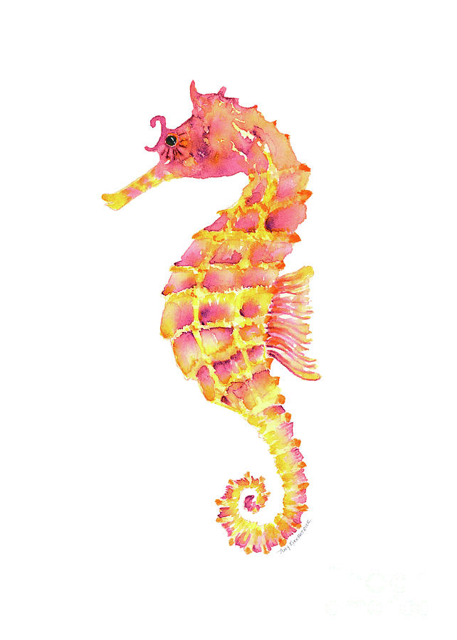 Images Of Seahorse Paintings