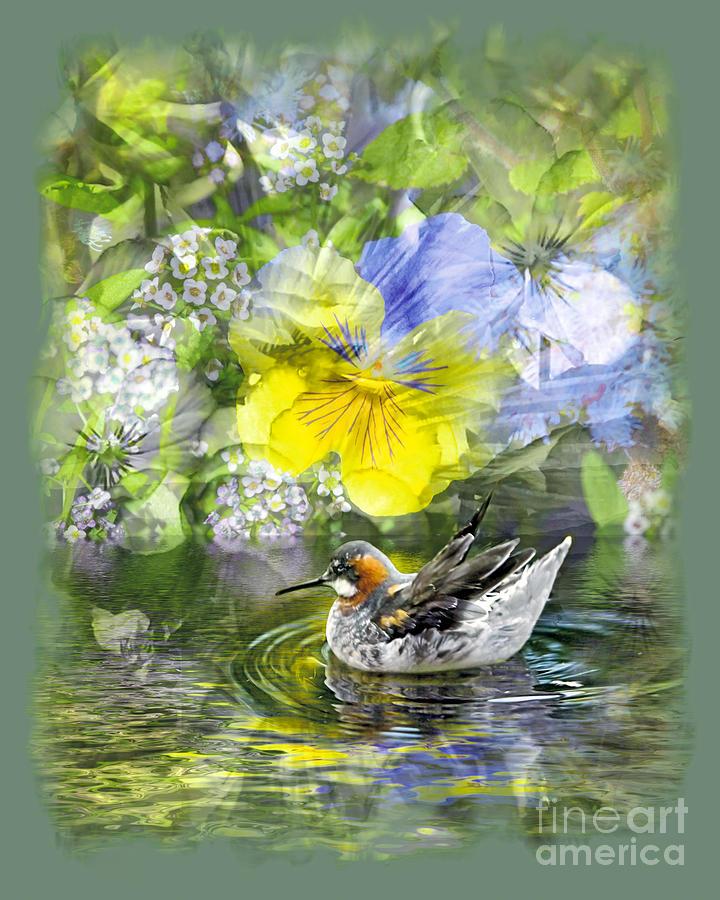 Floral Photograph - Pintail Pond by Chuck Brittenham