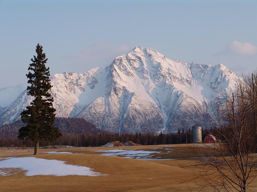 Pioneer Photograph - Pioneer Peak Alaska by Robert Braley