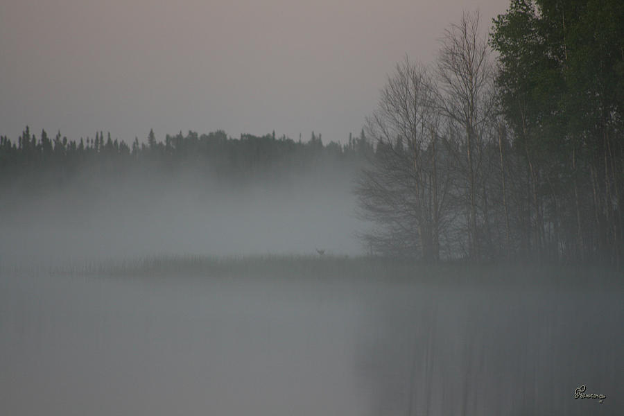 Piprell Lake 4 Am Mist Photograph by Andrea Lawrence