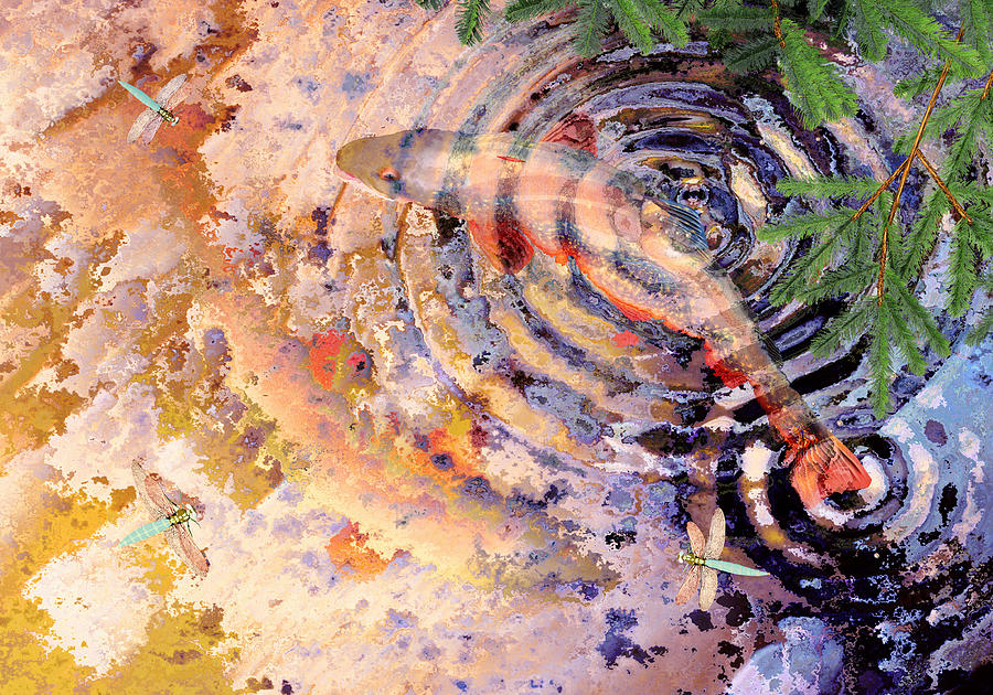 Pond Painting - Pisces by Peter J Sucy