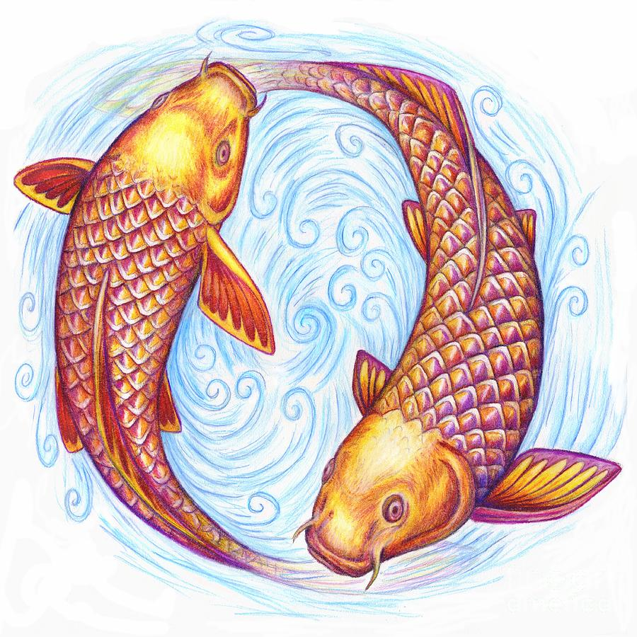 Pisces Drawing - Pisces by Rebecca Wang
