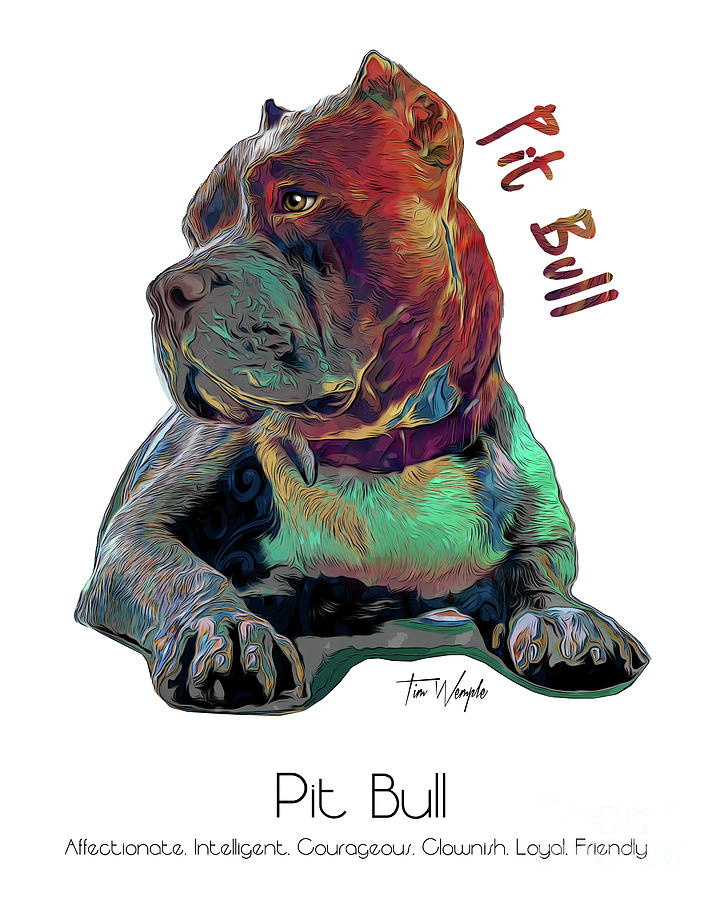 Pit Bull Digital Art - Pit Bull Pop Art by Tim Wemple