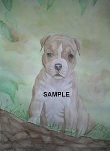 Pit Bull Terrier Puppy Painting by Billie Riholm