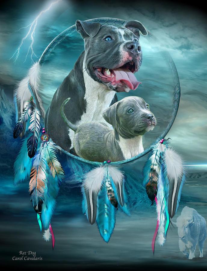 Carol Cavalaris Mixed Media - Pit Bulls - Rez Dog by Carol Cavalaris